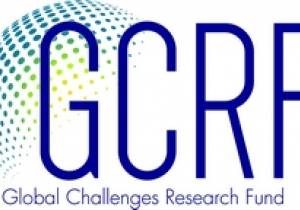 Resilient and sustainable energy networks for developing countries